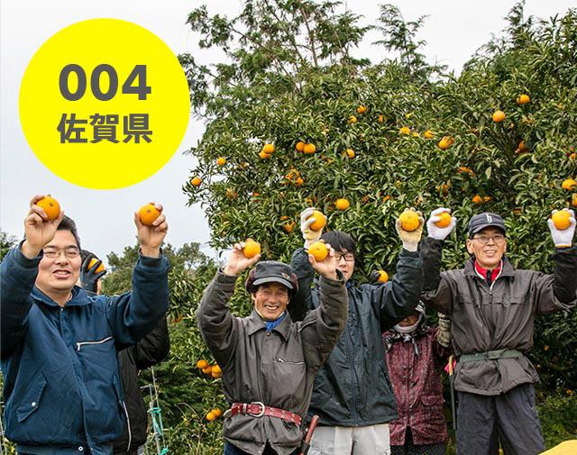 佐賀県:佐藤農場