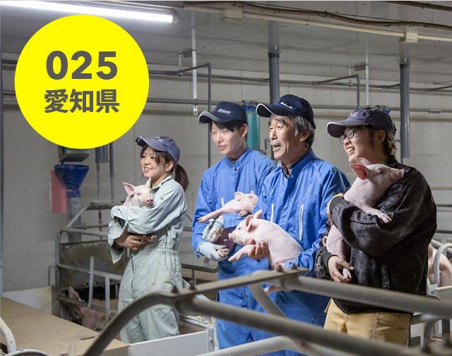 愛知県:石川養豚場