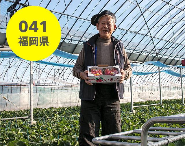 福岡県:原農園