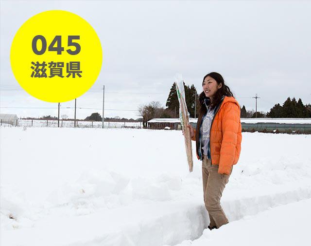 滋賀県:みのり農園