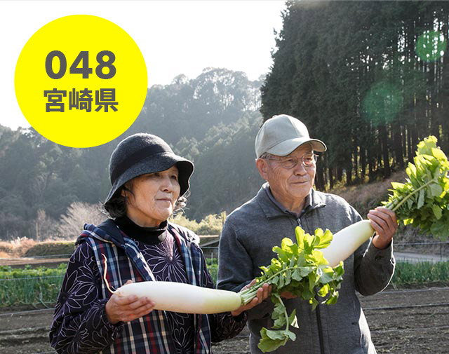 宮崎県:野尻普及会