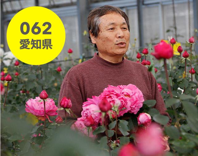 愛知県:ベルバラ園
