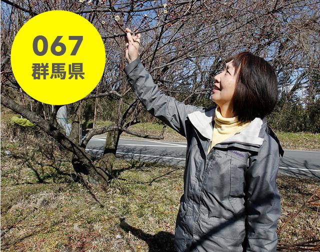 群馬県:樋口 千恵子