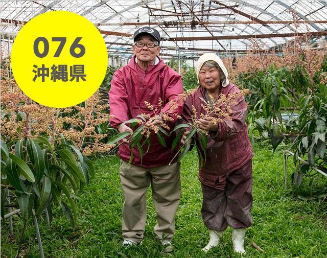 沖縄県:さおり丸農園