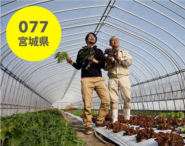宮城県:仙台たんの農園
