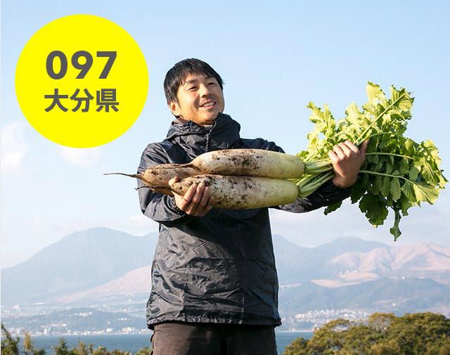 大分県:青井農園